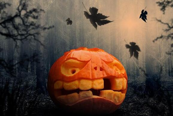 Case Study of Dreaming of Pumpkins