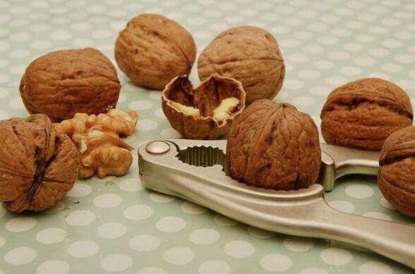 Case Study of Dreaming of Walnuts