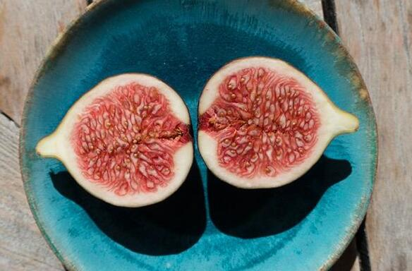 Case Study of Dreaming of Figs