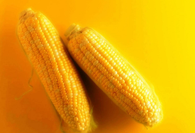 The meaning and symbol of Golden corn in dream