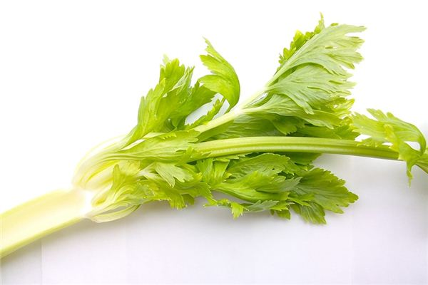The meaning and symbol of celery in dream