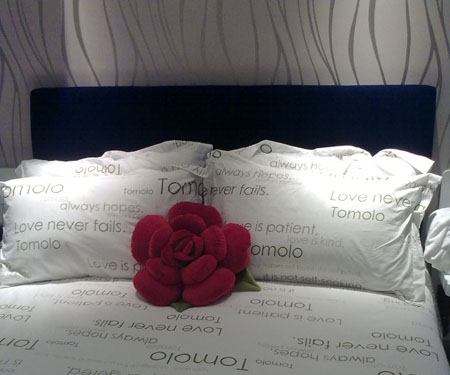 The meaning and symbol of Red pillow in dream