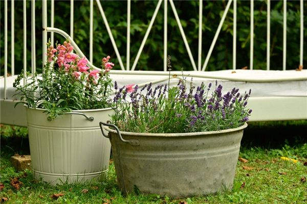 The meaning and symbol of Pots and buckets in dream