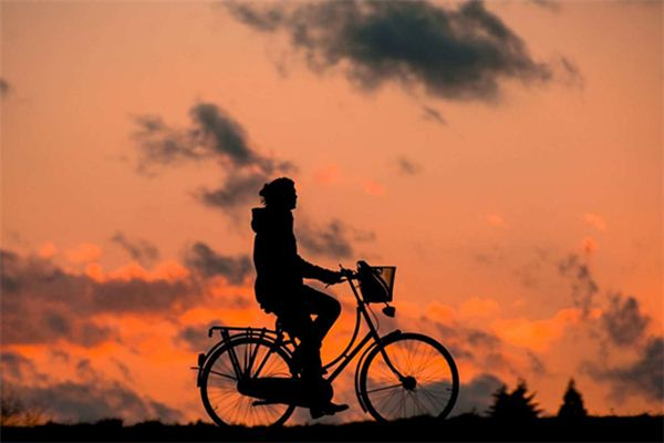 The meaning and symbol of Looking for a bike in dream