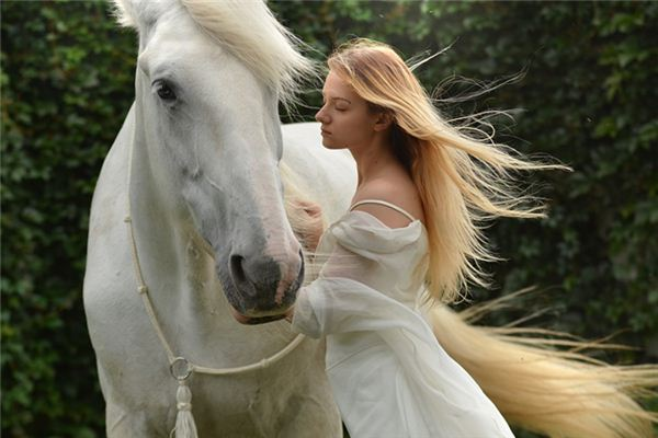 The meaning and symbol of Grooming the horse in dream