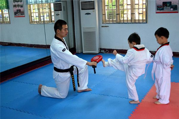 What is the meaning and symbol of taekwondo in the dream?